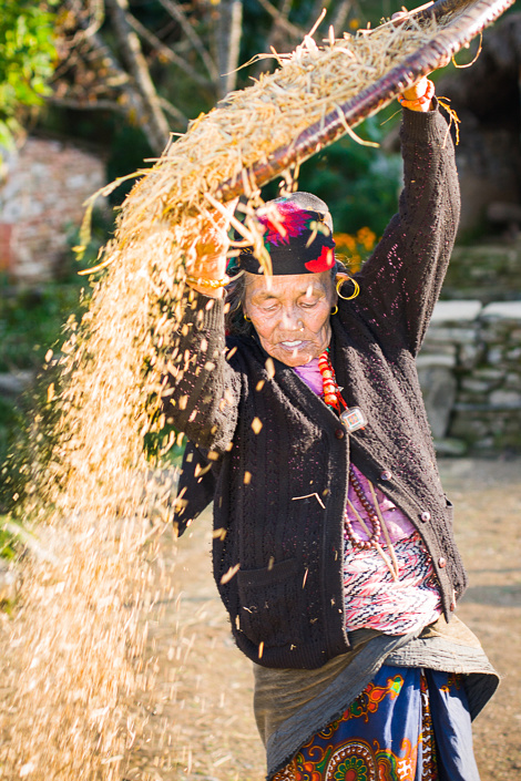 Une femme tamise le riz - Népal