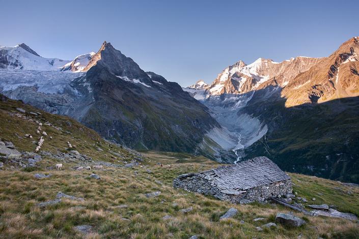 Glacier de Moming, Zinalrothorn, Dent blanche et Grand Cornier. - Suisse