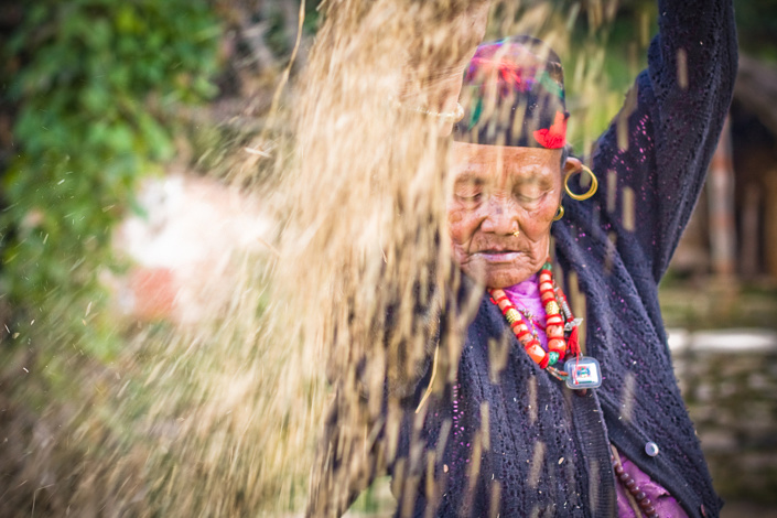 Nepal, Pokhara, Une vieille femme separe les grains de riz de leur enveloppe a l'aide d'un panier en bambou tresse.
