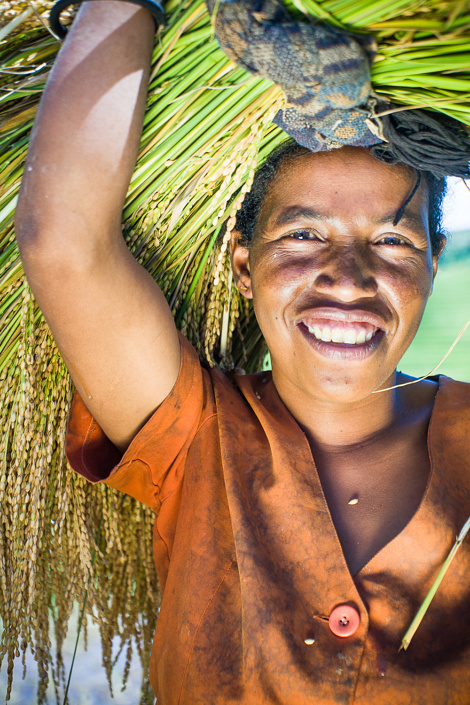 Agriculture à Madagascar